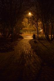 2012-11-18-17.02-005t.JPG